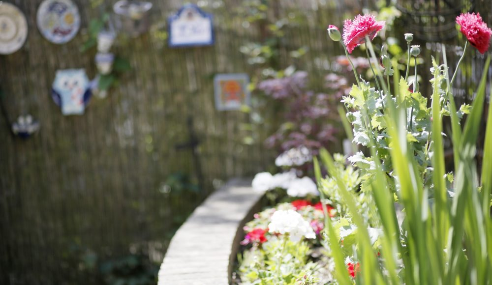 James Terry Court garden