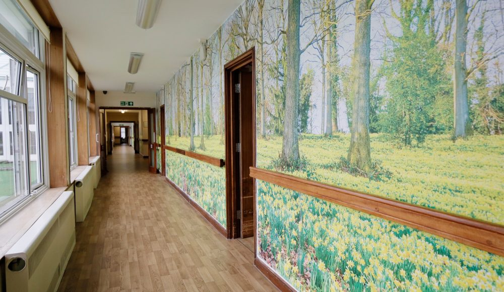 Forest corridor at Prince George Duke of Kent Court