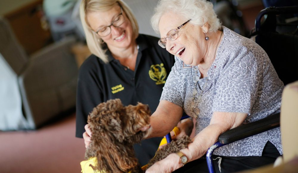 Pets as Therapy activity at Queen Elizabeth Court