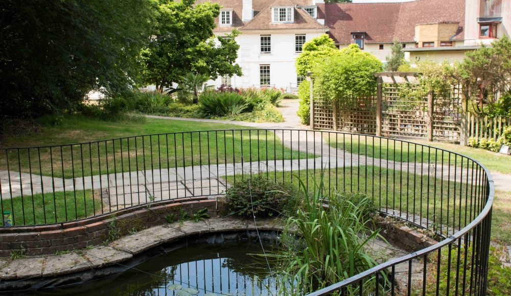 Pond and garden at Shannon Court