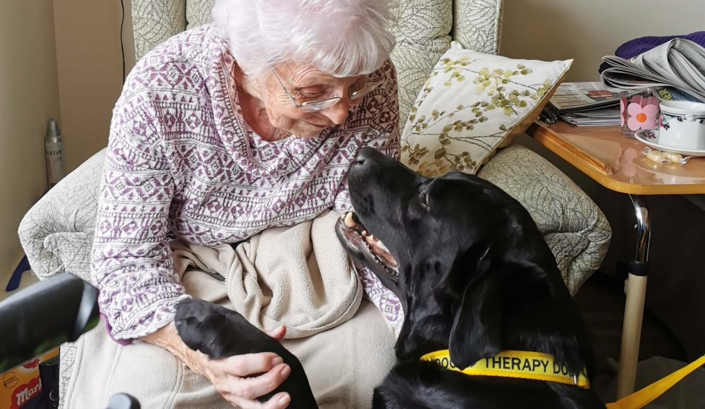 Resident Dylis Waddington 'catches up' with Stella, a therapy dog